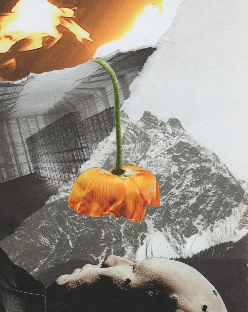 Kate HOLFORD - We Need a New Metaphysics of Nature (collage) 2019
