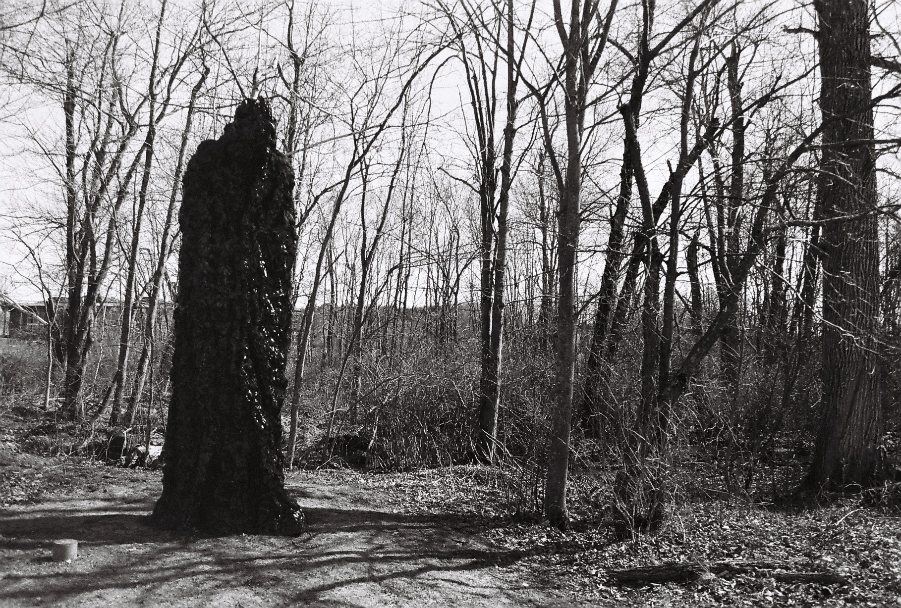 A black and white photograph of a large human-like figure wrapped in camouflage stood in woods